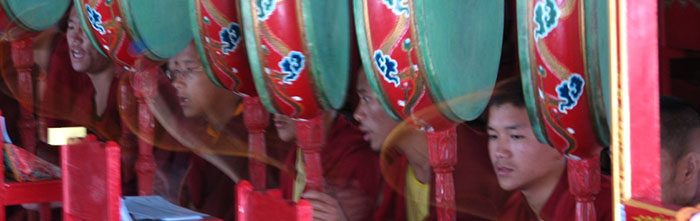 novice monks in a monastery